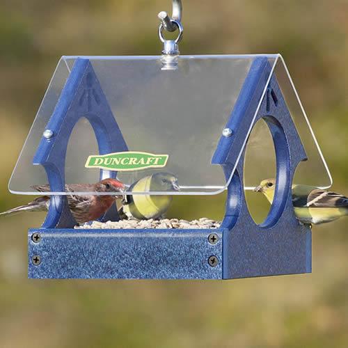 Songbird Mealworm Magnet Feeder
