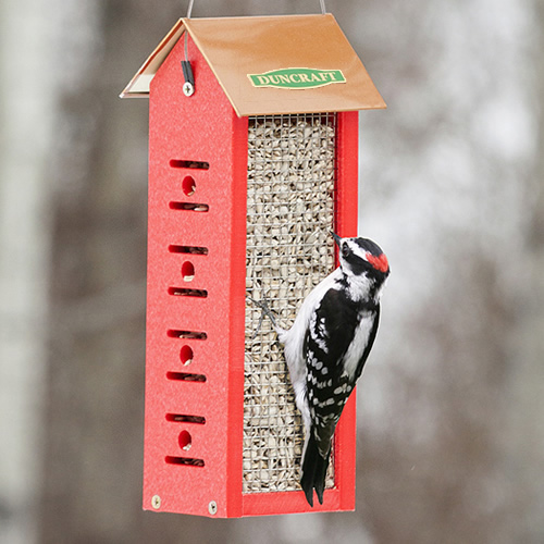 Four Sided Woodpecker Feeder