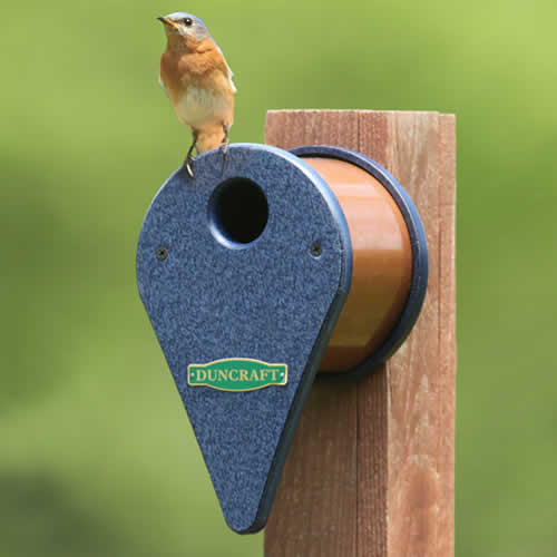 Map Marker Bird House