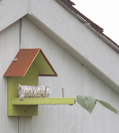 Hummingbird Nest Builder