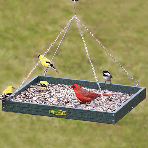 Large Hanging Platform Feeder