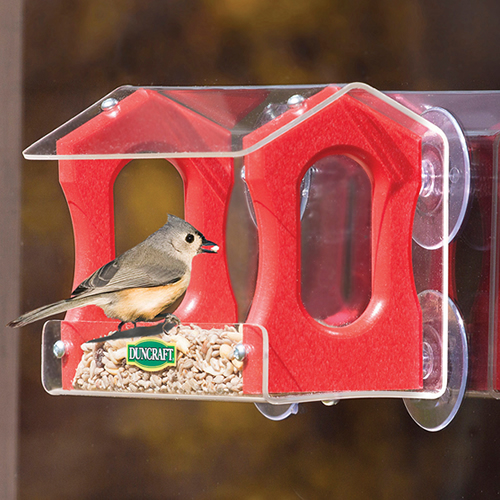 Flight Song Window Feeder