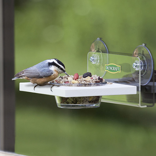 Window Easy Serve Feeder