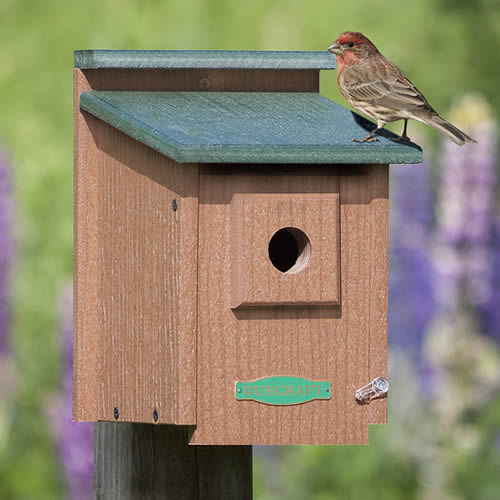 Duncraft Eco Strong Protected Songbird House