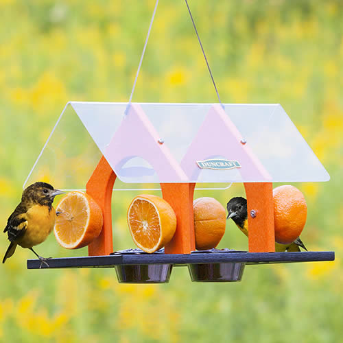 Super Sized Oriole Feeder