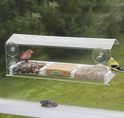 Picture Window Feeder