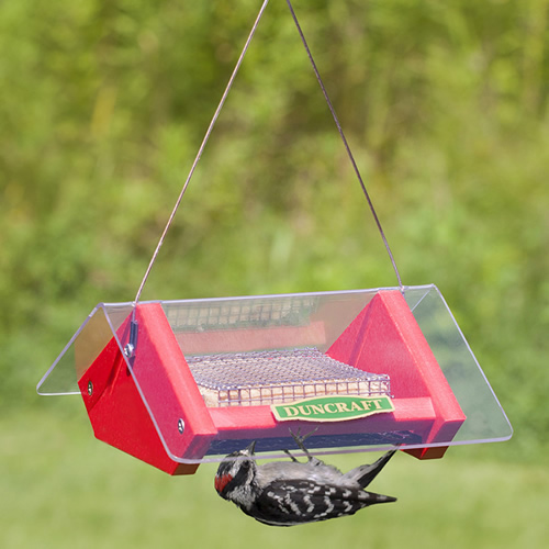 Upside Down Suet Shield Blocker Feeder