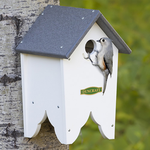 Chocorua Bird House