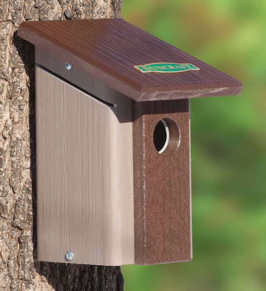 Chickadee Nuthatch Bird House