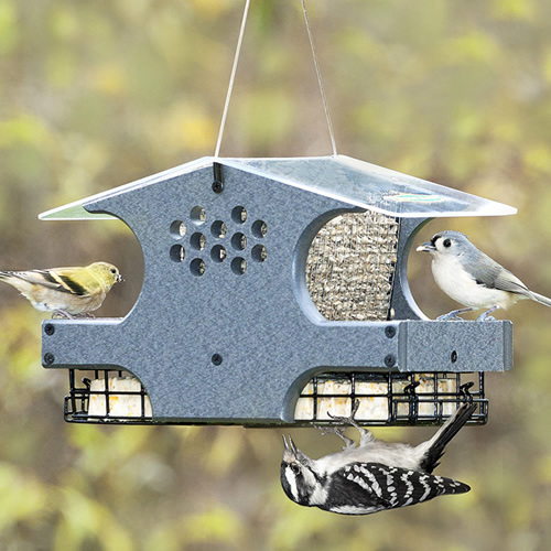 Three-In-One Bird Feeder