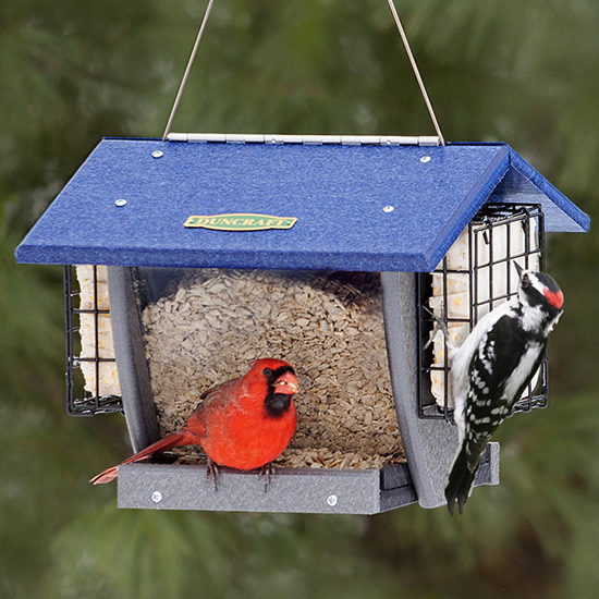 Duncraft Cardinal Shield Hopper and Suet Feeder