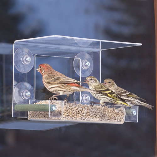 Bird Safe'® Classic Window Feeder