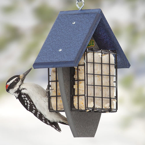 Double Sided Suet Tail Prop Feeder