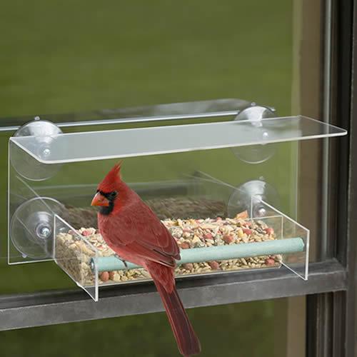 Bird-Safe Window Wonder Feeder (4521) photo