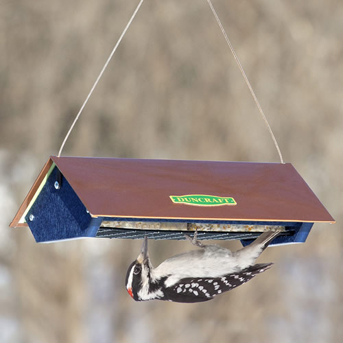 Eco Strong Double Upside Down Suet Feeder