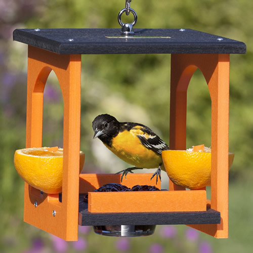 Oriole Fruit and Jelly Gazebo Feeder