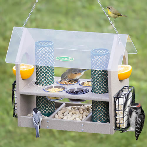 Super Deluxe Bird Feeder