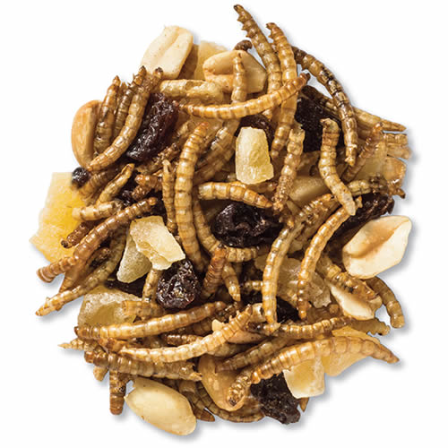 Supreme Trail Mix