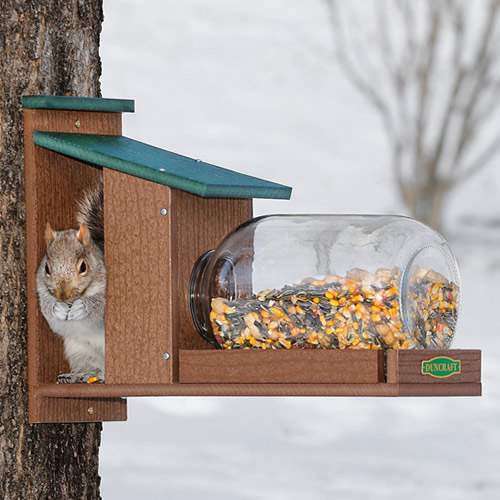 Duncraft Eco Squirrel Jar Feeder