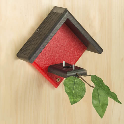 Little Red Hummingbird House