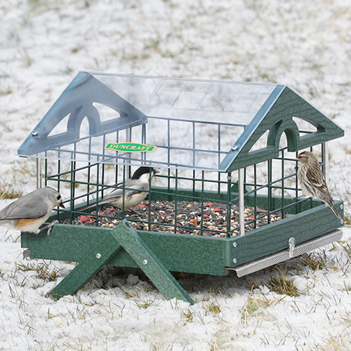 Pavilion Ground Haven Feeder