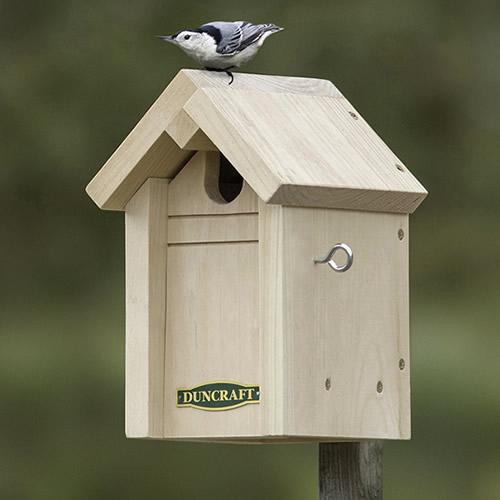 Common Bird Pine Nesting House (4605) photo