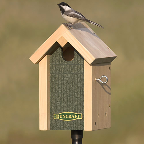 Common Bird Nesting House