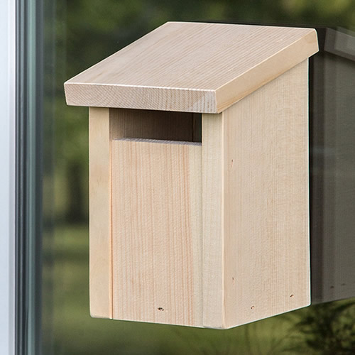 Slot Entry Window View Bird House