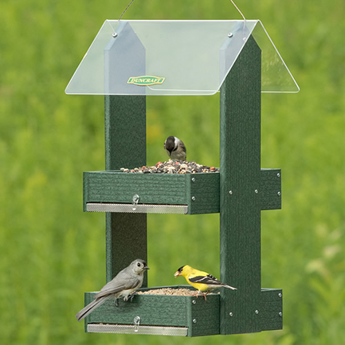 Double Platform Fly Thru Feeder