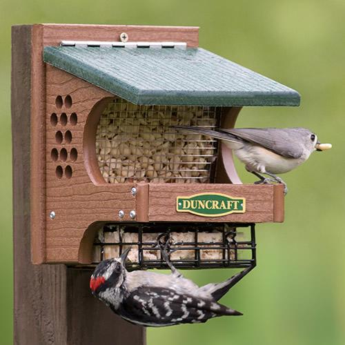 Woodpecker Delight Bird Feeder (4712) photo
