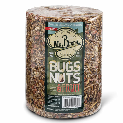 Bugs - Nuts and Fruit Large Cylinder