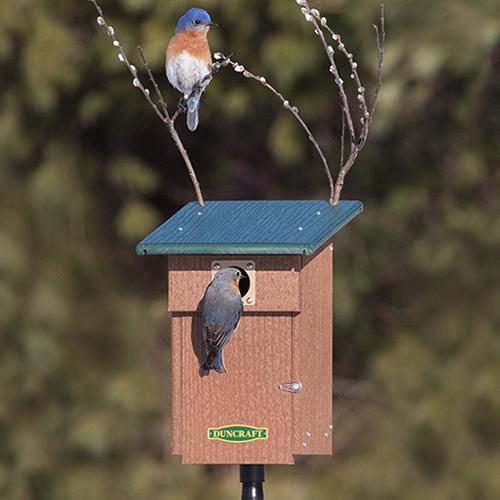 Bluebird Landing View House & Pole (4757) photo