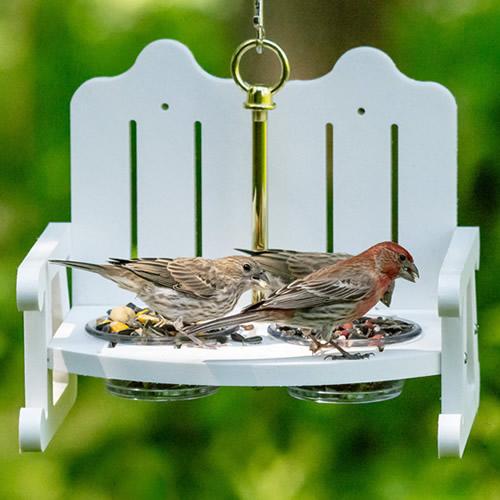 Garden Bench Bird Feeder (4778) photo