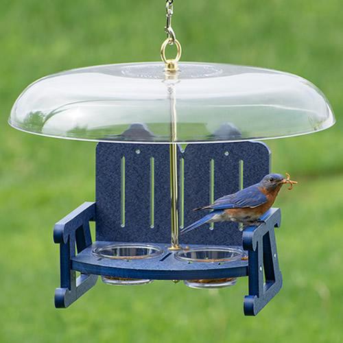 Duncraft Bluebird Sidewalk Cafe Bird Feeder (4783) photo