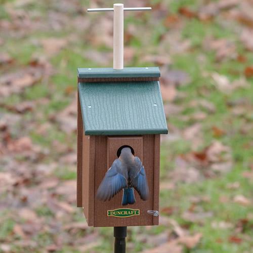 Bird-Safe® Perch View Bluebird House & Pole (4820) photo