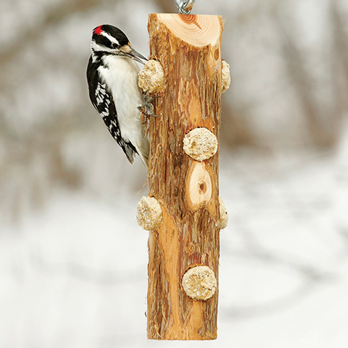 Log Jammer Hardwood Feeder