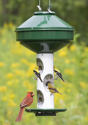 Heavy Duty Bird Feeder