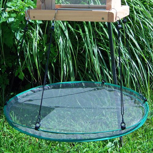 24- Seed Hoop