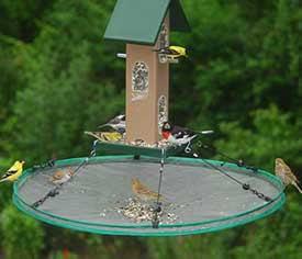 """30"""" Seed Hoop"""