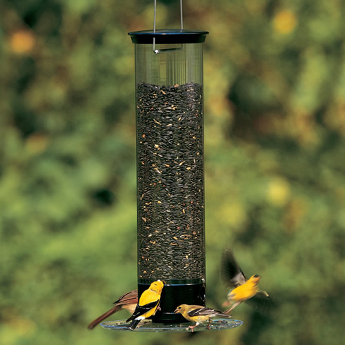 Droll Yankees Tipper Squirrel-Proof Bird Feeder