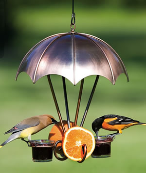 Copper Oriole Feeder