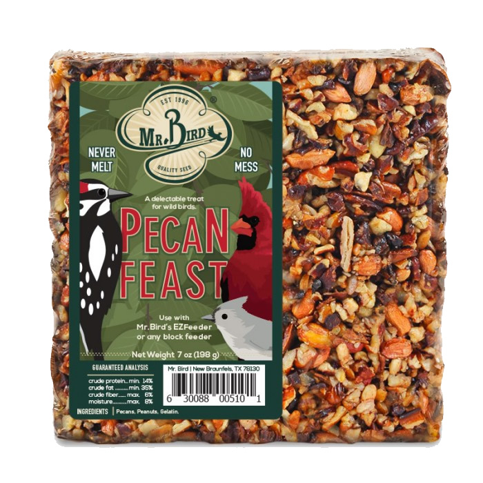 Pecan Feast Seed Cake, Set of 3