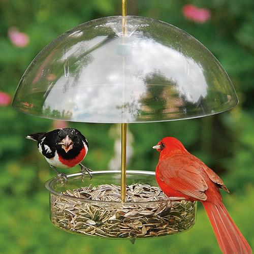 Droll Yankees Seed Saver Bird Feeder (5131) photo