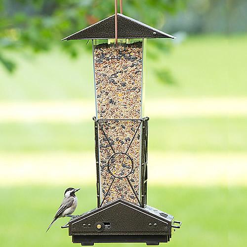Fortress Squirrel Proof Bird Feeder