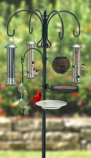 Baffles and Predator Guards for Bird Feeders and Bird Houses
