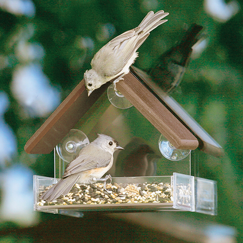 Eco Strong Window Feeder