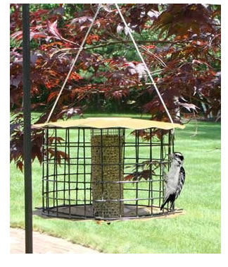 Baffled Peanut Feeder