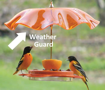 Orange Swirl Weather Guard