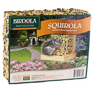Birdola Squirola Cake