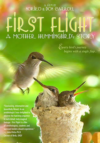 "A beautiful film about Honey the hummingbird and her brood.Sensitively and exquisitely filmed with stunning close-ups, documentary filmakers Noriko and Don Carroll follow a mother hummingbird whose nest has been built on a clothesline under their porch roof. Honey, the female black chinned hummingbird, repairs last year's nest and then raises her new brood, all shown in incredible closeups—beginning with the eggs hatching and continuing as they learn to preen and practice with their wings. You'll fall in love with Honey as she nurtures her babies and bravely protects them from the family cat—until finally they take their first flight.45 minutes long, including a special ""Making Of"" featurette with the authors and a hummingbird slide"